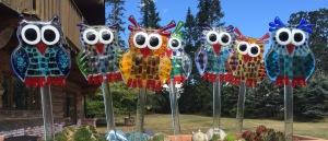 owls-2016